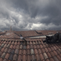 Shadow Venice Roof, Portraits, Creative pictures, Surreal photographs, Digital manipulation in photography