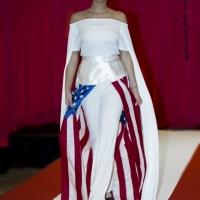 The Washington Presidential Inaugural Fashion Show DCFS