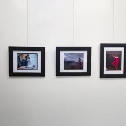MakarovaFoto.com Exibition 2017 April Woodbridge Gallery Frames