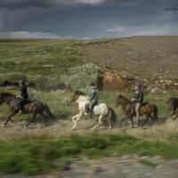 Horses_Iceland_MakarovaFoto.com